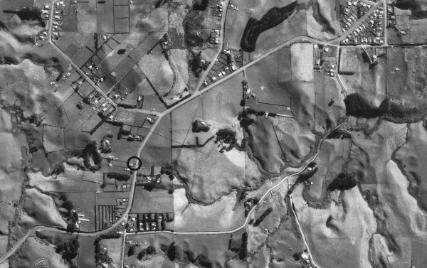 1950 Aerial photo from Puke Ariki collection